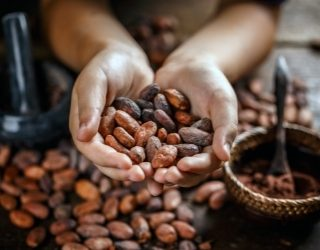 Modern Slavery And Child Labour in the Cocoa Industry